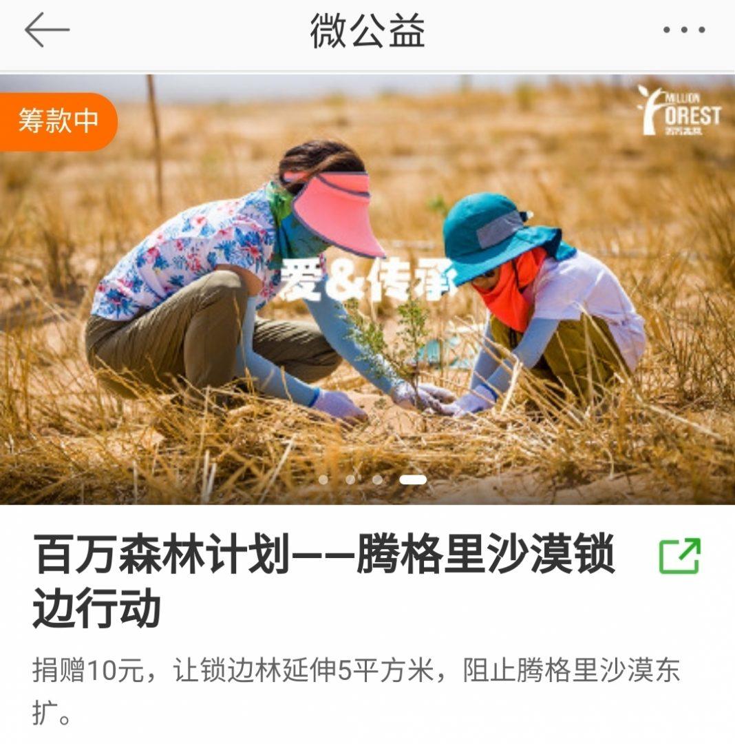 Китайские Dears посадили 2780 деревьев ко Дню рождения Димаша
